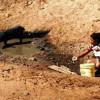 Drama da seca: Poços secam e agricultores da região de Jaicós não conseguem nem comprar água