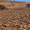 Seca de 2015 no Piauí será ainda maior que no ano passado, segundo meteorologia