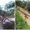 Bombeiros e populares buscam corpo de jovem desaparecido em rio; veja as imagens!