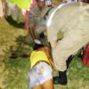 Mulher tem traumatismo craniano e morre após estátua cair por cima dela em Araripina