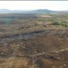 Plantação de maconha descoberta por drone abastecia Picos e Jaicós