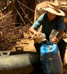 JN mostra o drama das famílias que sofrem com efeitos da seca no Piauí