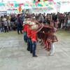 Escola Davi Pires de Marcolândia realiza festa junina