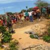 Homem é assassinado e tem órgãos expostos no Piauí