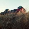 Caminhão que transportava gado tomba em estrada no Sul do Piauí