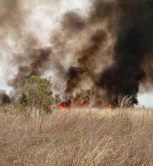 Incêndio de grandes proporções atinge terreno de empresa em Guadalupe