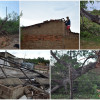 Em Belém do Piauí, Chuva e fortes rajadas de ventos derrubam árvores, placas e muros em localidade do município
