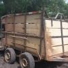 Quadrilha usa reboque para roubar gado em fazenda no Piauí