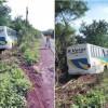 Ônibus tem problemas mecânicos e desce em aterro na PI-211