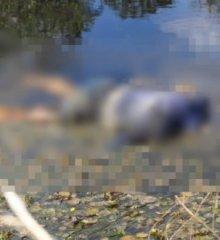 Corpo de mulher supostamente morta pelo filho é encontrado em barreiro em município da região de Paulistana