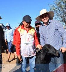PADRE MARCOS | Mais de 800 animais são viabilizados para 55 famílias da Associação dos Pequenos Produtores Rurais da Casa Nova