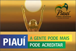 Banner Estado do Piauí