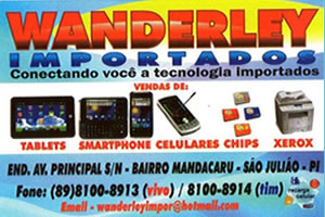 Banner Lateral – Wanderley importados